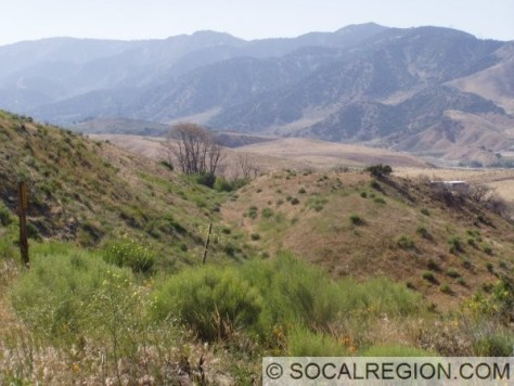 Good example of a fault scarp, offset stream, and springs at the summit of Tejon Pass.