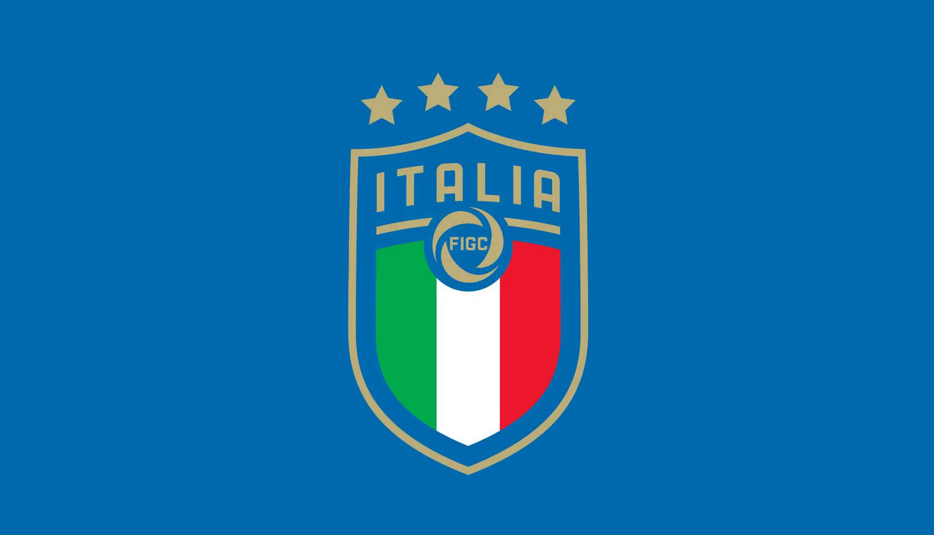 Italian football federation (FIGC)