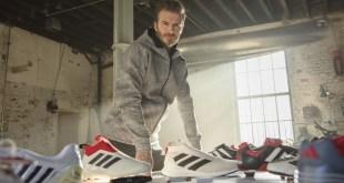 David Beckham Predator Capsule