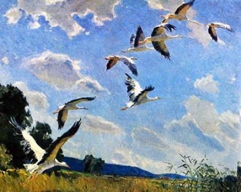 взмывающие ввысь аисты на фоне голубого неба