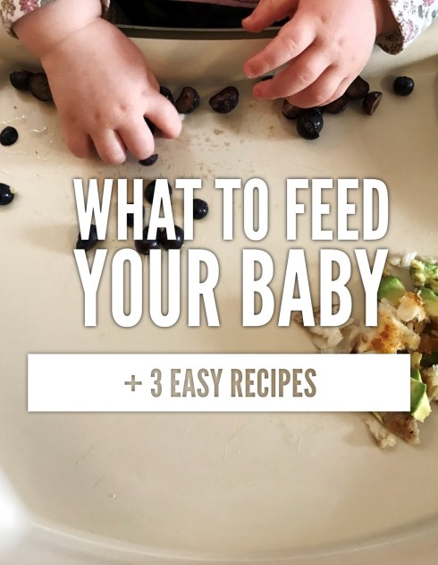 What should I feed my baby? Baby food? Meals for a 10 month old