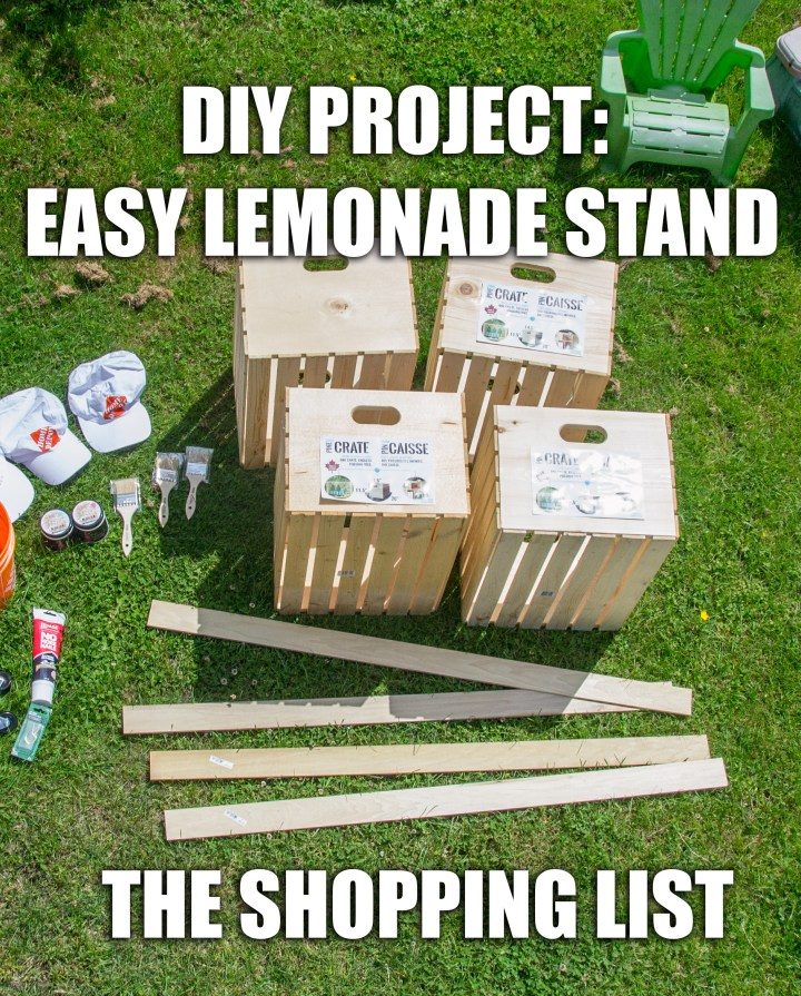 Diy Lemonade Stand Part Two Shopping List And Painting Socialdad Ca