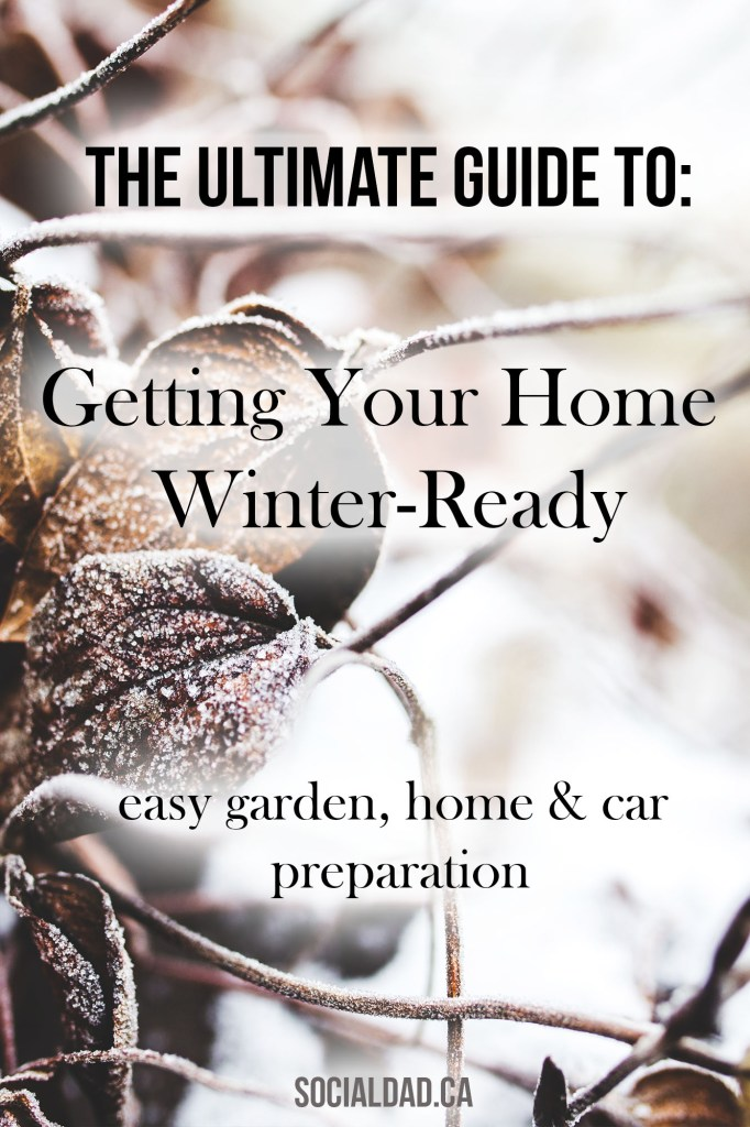 winter ready, getting your garden ready for winter, toys for snow, snow toys in vancouver, dad blogger, social dad blog