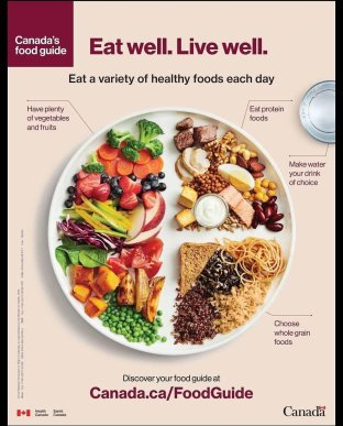 healthy eating diagram, how to lose weight, losing weight, dad bod, balanced meal picture, plate diagram, home economics, dad blog, socialdad, dads in vancouver, daddy blogger, dad bloggers in vancouver, vancouver BC, BC blogger, travel blogger, technology bloggers, car reviews, James Smith, Vancity, vancouver bloggers, vancouver influencers, canadian influencers, top parenting bloggers, 2019 bloggers, dad camp, canadian dad, casey palmer, canadian daddy bloggers
