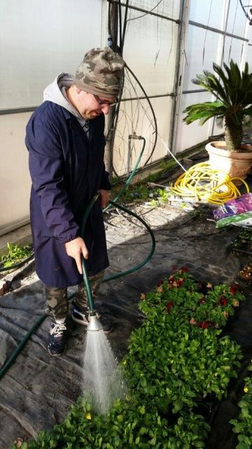 Romea Garden Storie belle di presentatori radiofonici, di lavoratori al Mc Donald's o giardinieri