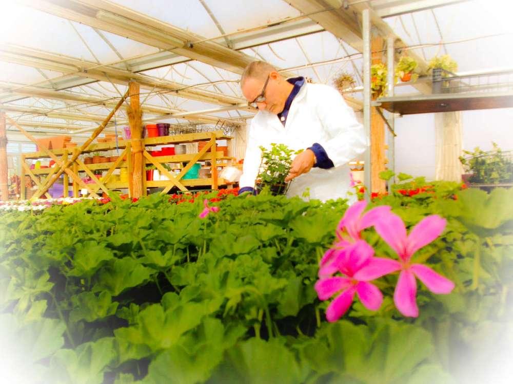 PSX 20150323 140602 Attività di formazione e conoscenza florovivaistica