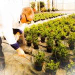 PSX 20150323 141502 150x150 Attività di formazione e conoscenza florovivaistica