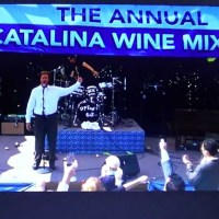 Step Brothers Fans Can Now Attend the Real Catalina Wine Mixer