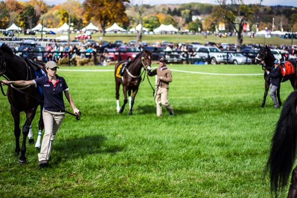 far hills horse race (13)