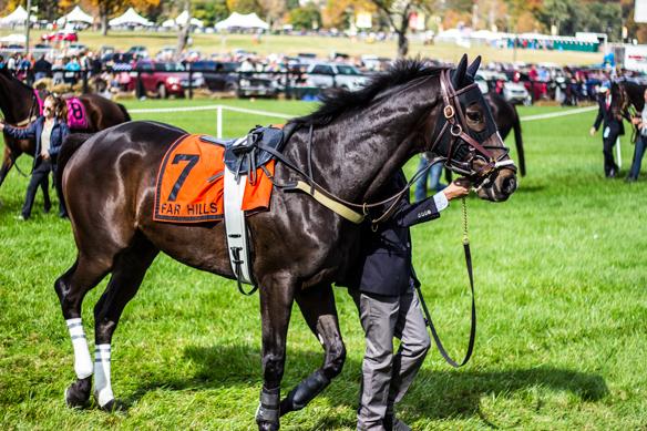 far hills horse race (16)