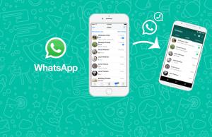 whatsApp_trasferire-le-chat_cover