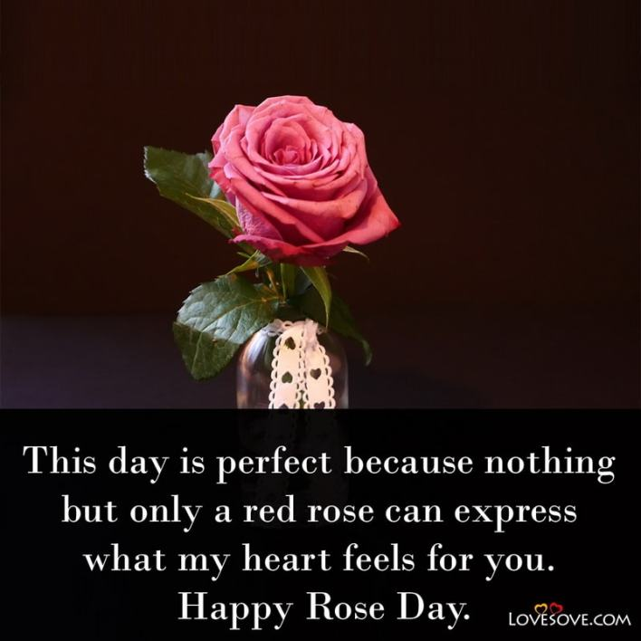 Rose Day Wishes To Best Friend, Rose Day Wishes For Husband In Hindi, Wishes On Rose Day, Rose Day Wishes For Girlfriend In Hindi, Rose Day Best Wishes, Rose Day Wishes For Crush, Rose Day Wishes To Friends,
