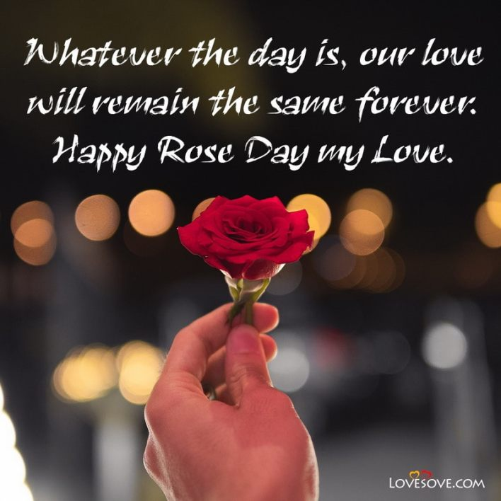 Happy Rose Day Picture Download, Happy Rose Day My Love Status, Happy Rose Day Romantic Sms, Happy Rose Day Love Status, Happy Rose Day Status For Husband, Happy Rose Day Status For Love,