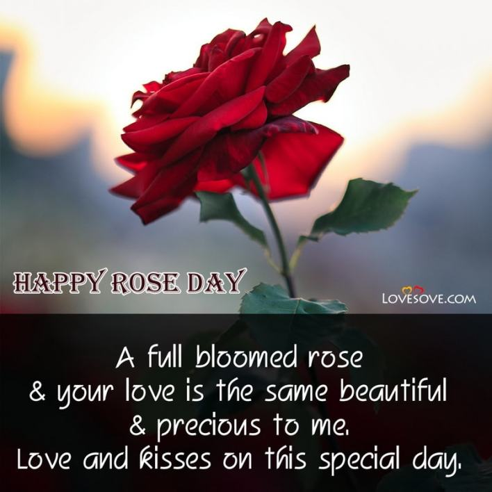 Happy Rose Day Quotes For Wife, Happy Rose Day Sad Quotes, Happy Rose Day Quotes For Girlfriend In Hindi, Images Of Happy Rose Day With Quotes, Happy Rose Day Quotes For Girlfriend,