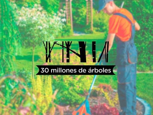 Diseño web 30 millones de árboles