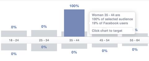 Facebook Publikum Einblicke Alterssegment