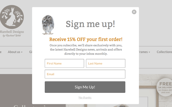An ecommerce discount code lead magnet.