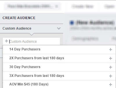 Analyze your chosen custom audience in Facebook Audience Insights.