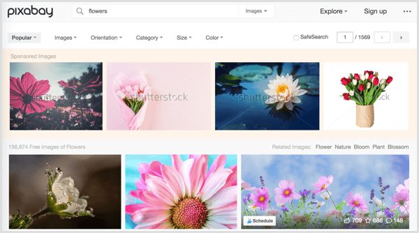 Pixabay search results