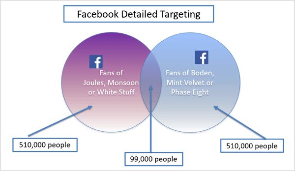 Grafik des detaillierten Facebook-Targeting-Beispiels