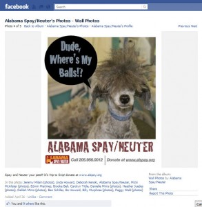 Funny image AL Spay/Neuter used on their Facebook page
