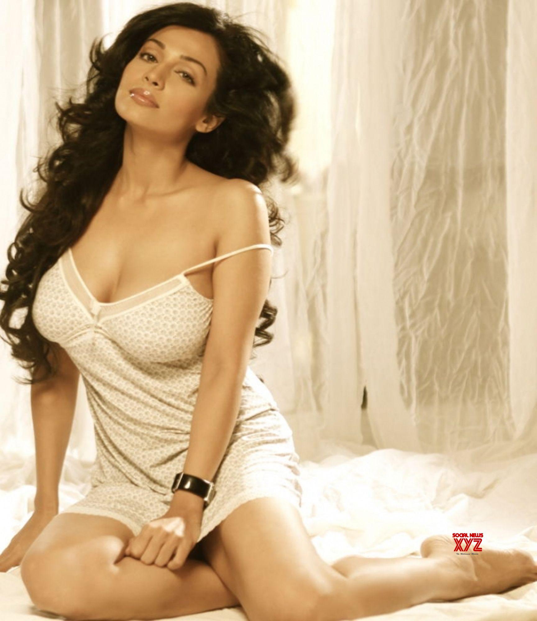 Designing Women Movie Actress Asha Saini Latest Hot Stills Social News Xyz