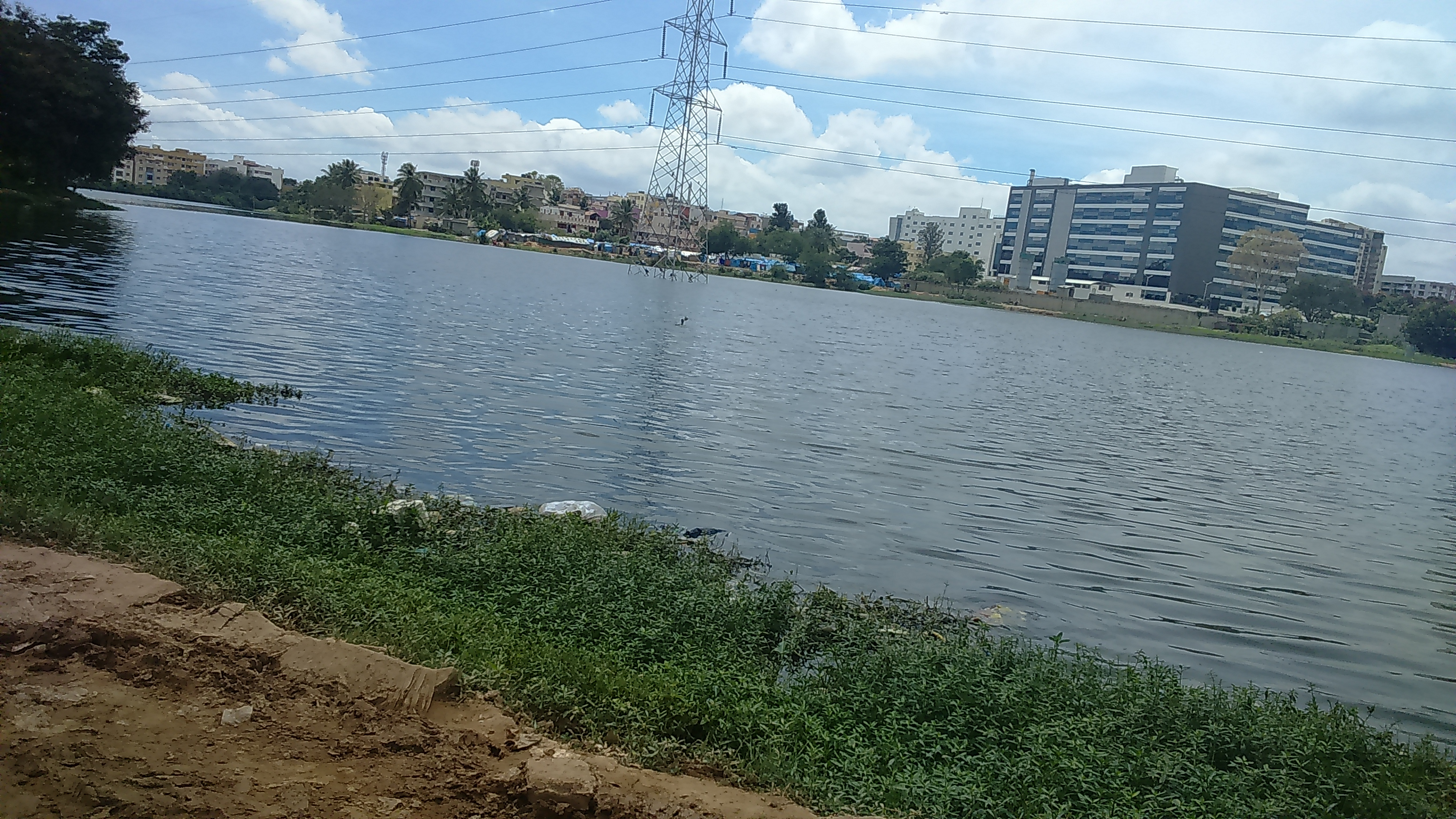 GE helps give Bengaluru's clogged lake new lease of life