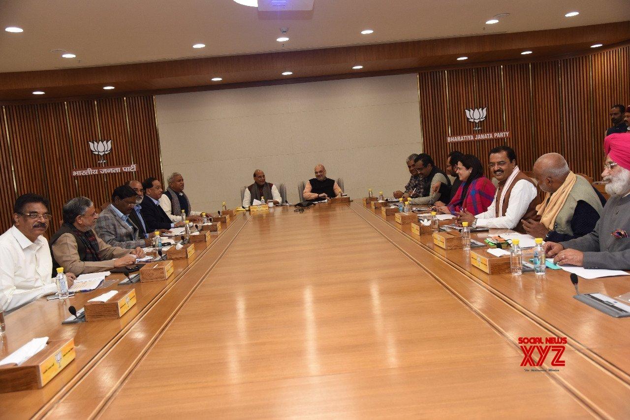 New Delhi: BJP Lok Sabha Election 2019 Manifesto Committee meeting #Gallery