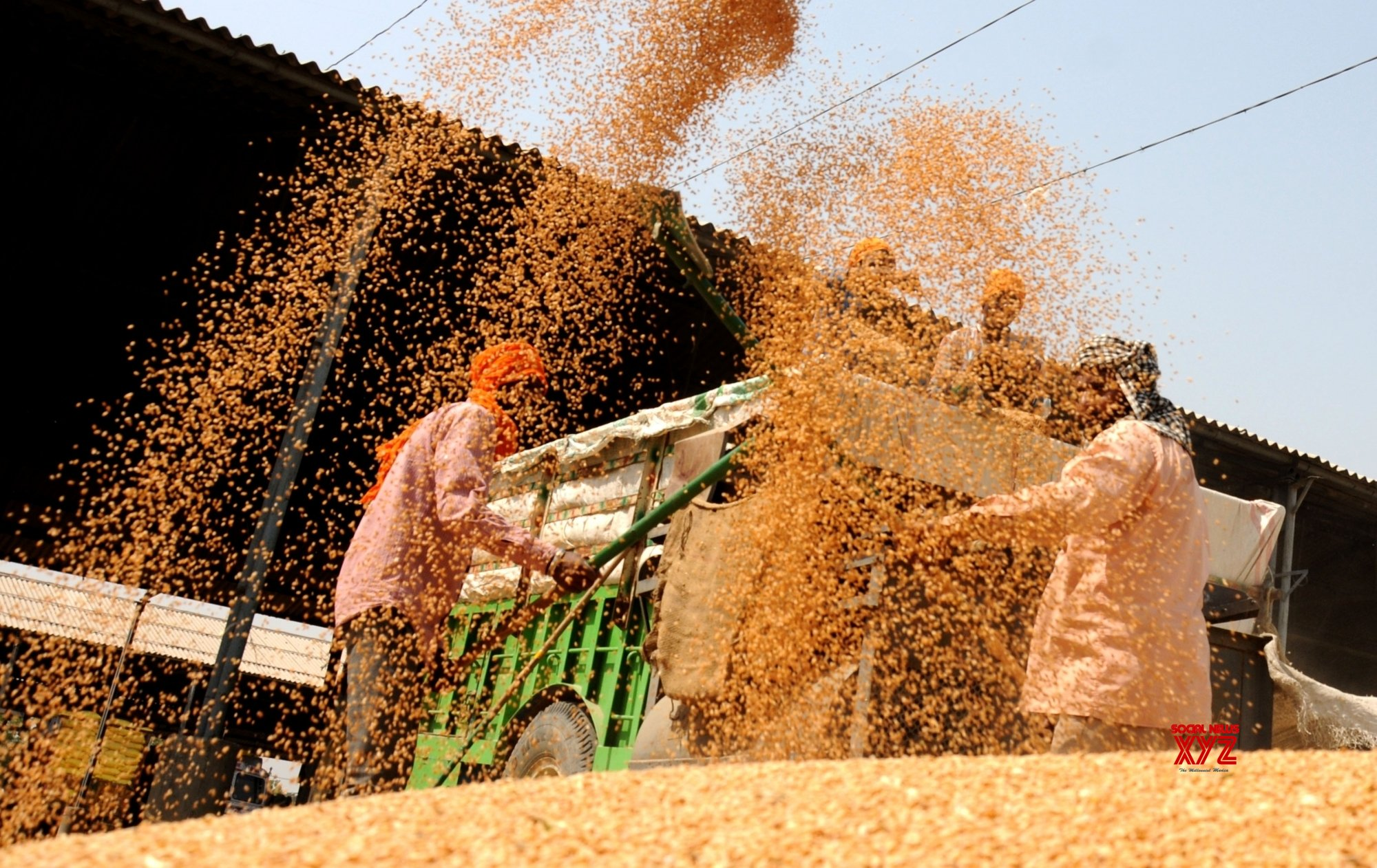 UP falters in wheat procurement target