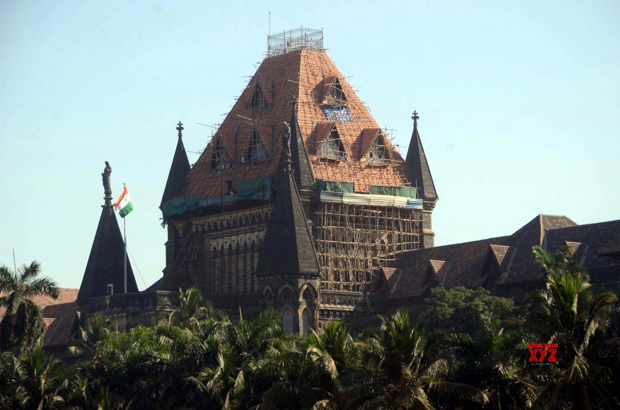 Bombay HC slams non functioning of tree authorities in Goa