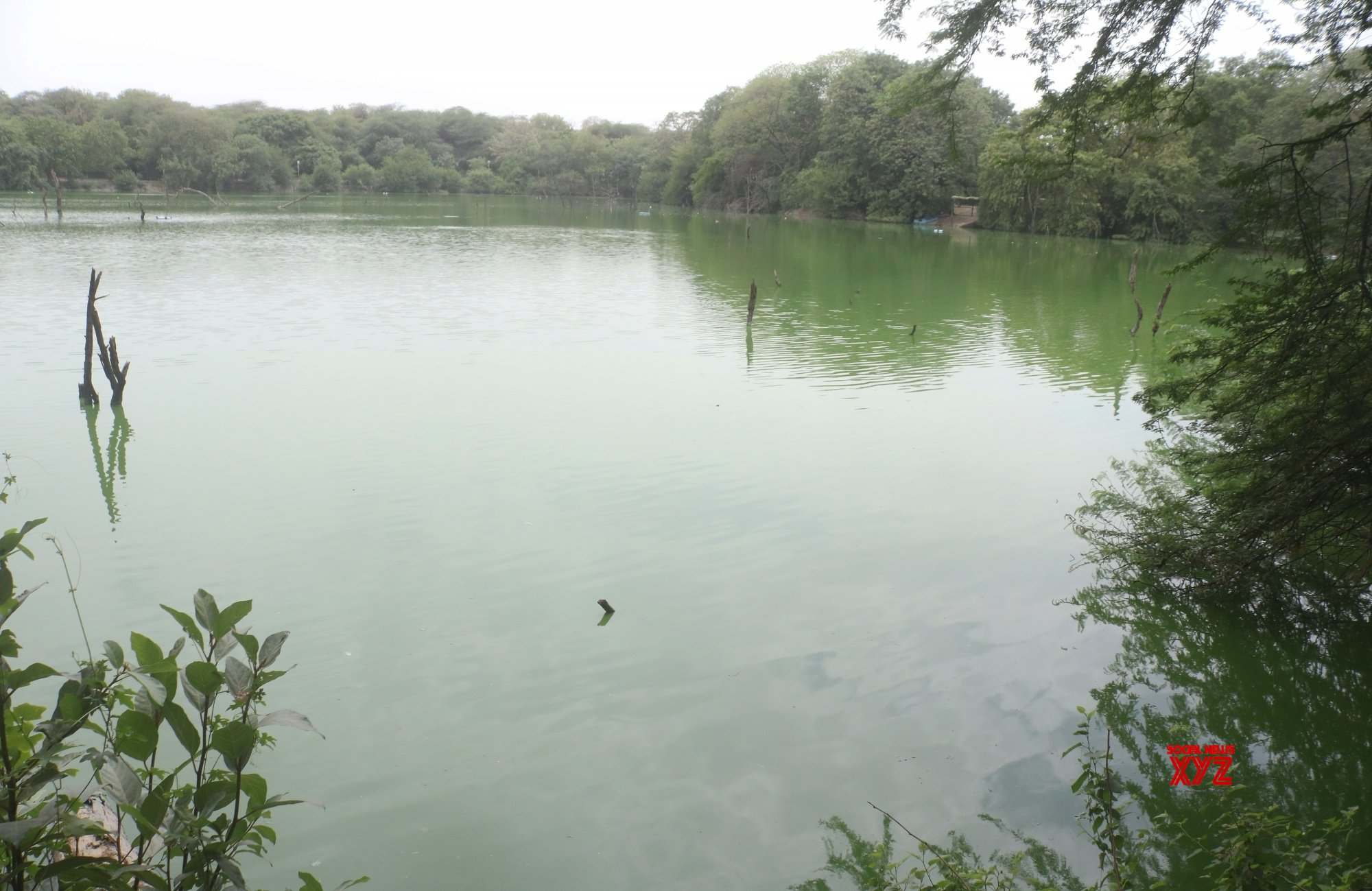New Delhi: Hauz Khas lake #Gallery