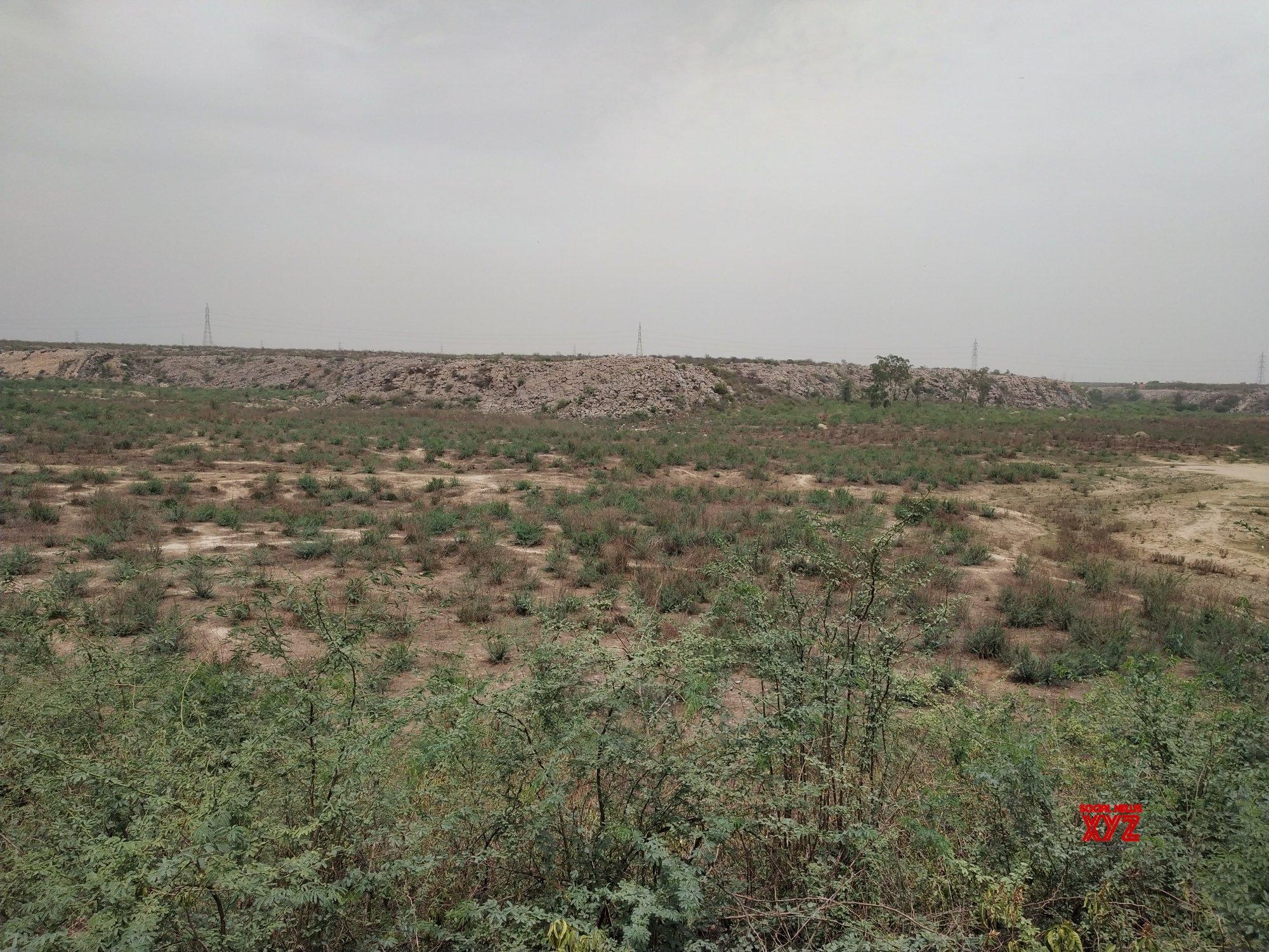 Faridabad: Dried - up Badkhal Lake #Gallery