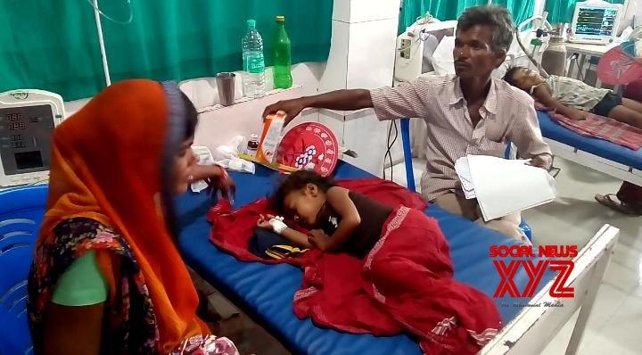 53 children die of AES in north Bihar in 10 days