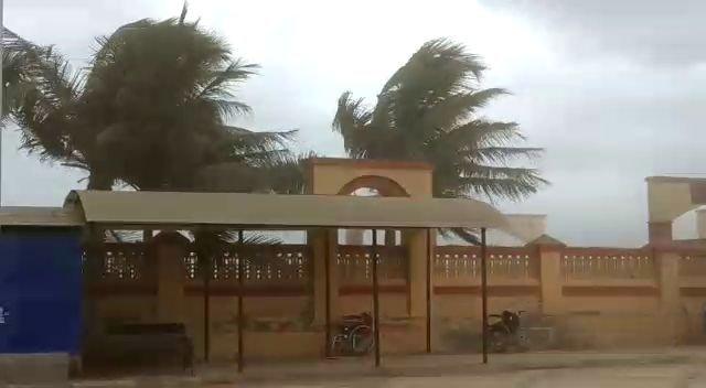 Cyclone Vayu begins skirting Gujarat coast, brings heavy rainfall: IMD