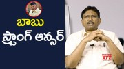 Babu Gives Good Reply To YSRCP (Video)