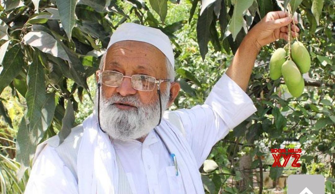 Malihabad (UP): New mango variety named after Amit Shah #Gallery