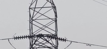 Prayagraj: Reportedly, a mentally challenged man climbed a high voltage power transmission tower near Bairhana in Prayagraj, on July 9, 2019. It took two hours to bring him down after the teams of fire department, police and power department reached the site. (Photo: IANS)