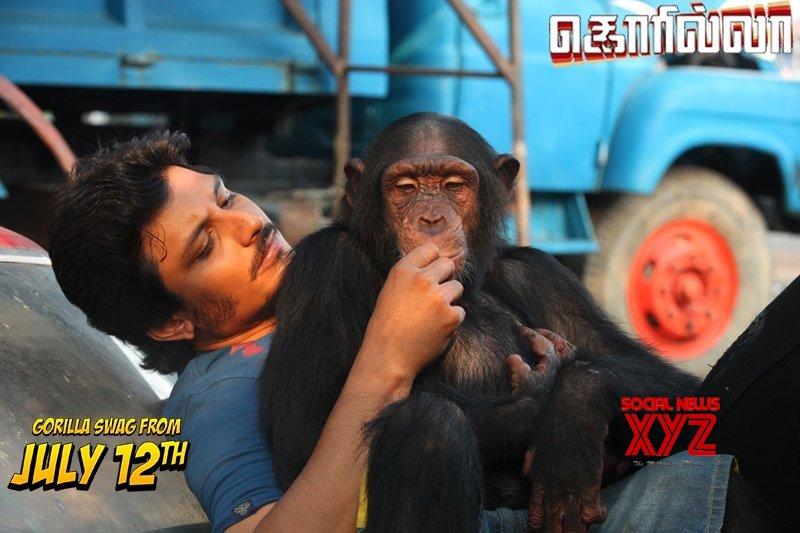 Gorilla Movie Working Stills