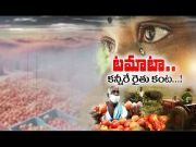 Tomato Farmers Hopes Crushed Mercilessly by Lock Down | Several Areas in Chitoor in Disarray  (Video)