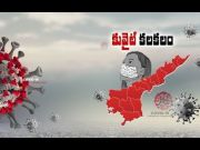 AP reports 47 new cases, 1 death | COVID -19 tally 2,561  (Video)