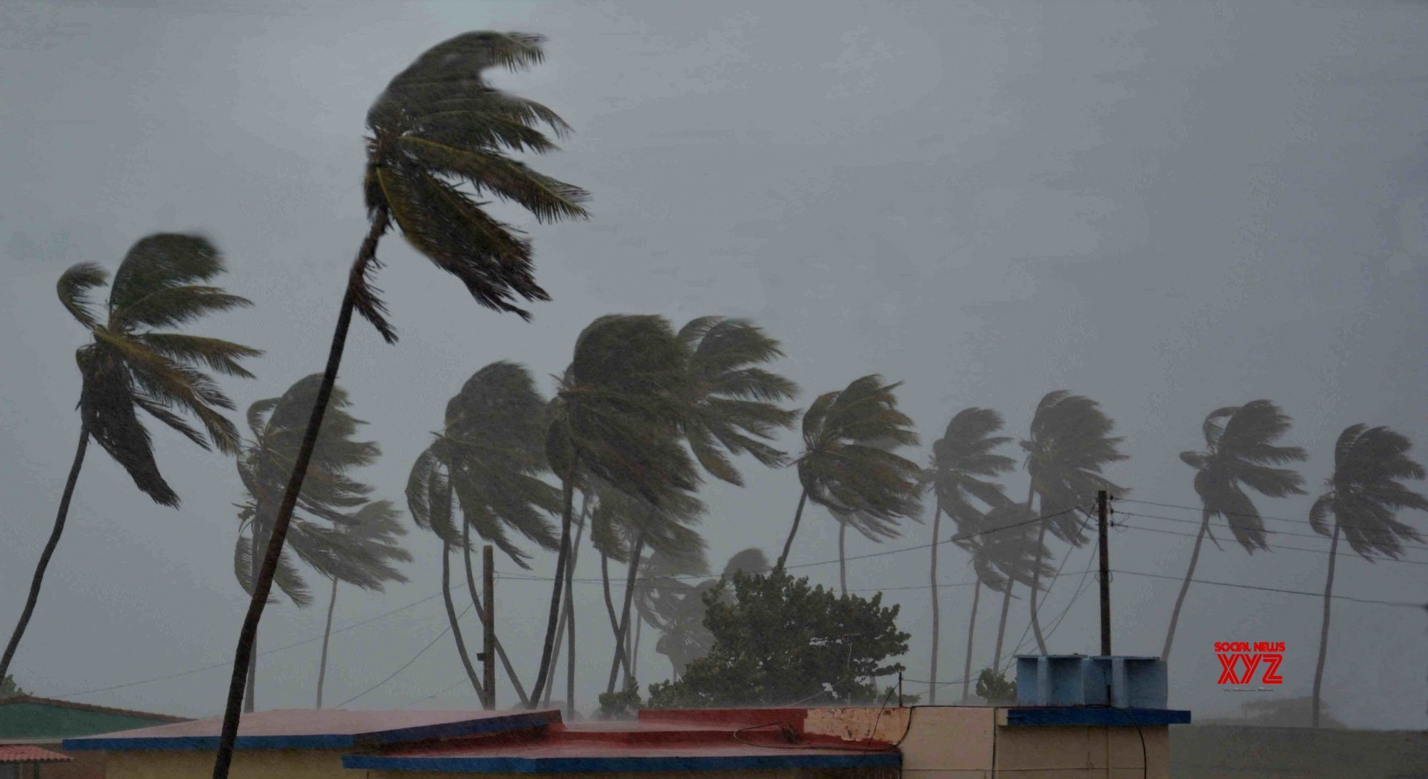 24 killed, 31 missing as storm strikes fishing ships in Indonesia