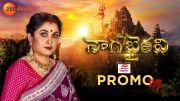 Nagabhairavi Promo | Ramya Krishnan, Pawon Sae, Yashmi Gowda, Kalki Raja | Zee Telugu [HD] (Video)