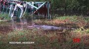 Hurricane Sally worries Mississippi gator ranch (Video)