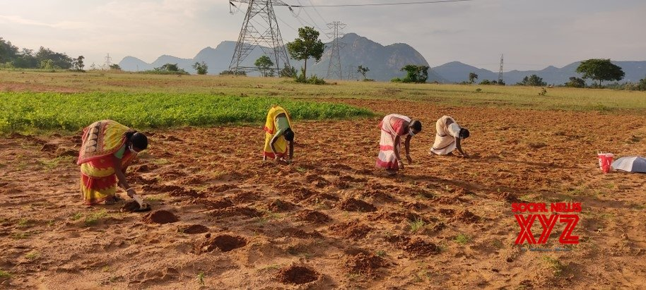 New $4.5mn Walmart Foundation grants to empower farmers in India