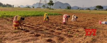 New $4.5mn Walmart Foundation grants to empower farmers in India.