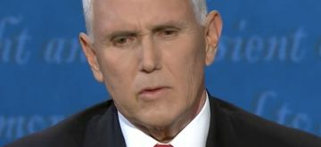 Close up of a fly that landed on Pence's head during the VP debate. Screenshot from livestream.
