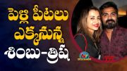 Trisha Krishnan and Simbu are Going to Get Married? (Video)