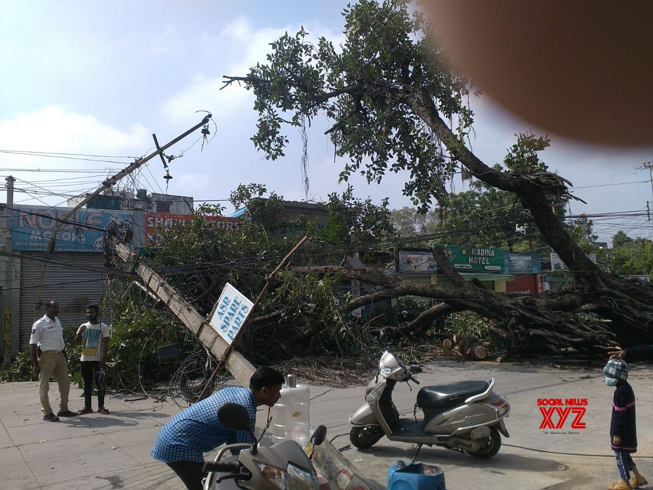 Hyderabad: Hundred year old Banyan tree uprooted due to heavy rain #Gallery