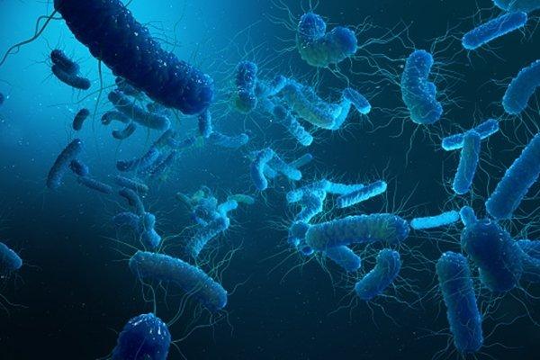 Novel paper-based sensor to detect antimicrobial pollutants