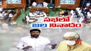 Water Dispute   YCP MPs Raise Voice @ Parliament Session  (Video)